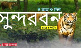 Largest Mangrove Forest Sundarban Tour
